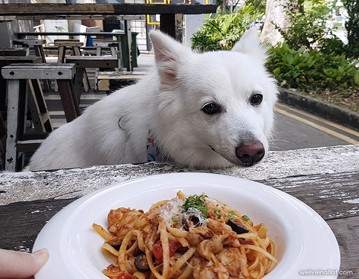 Chicken and Olive Pasta, Artistry Cafe - dog friendly Singapore