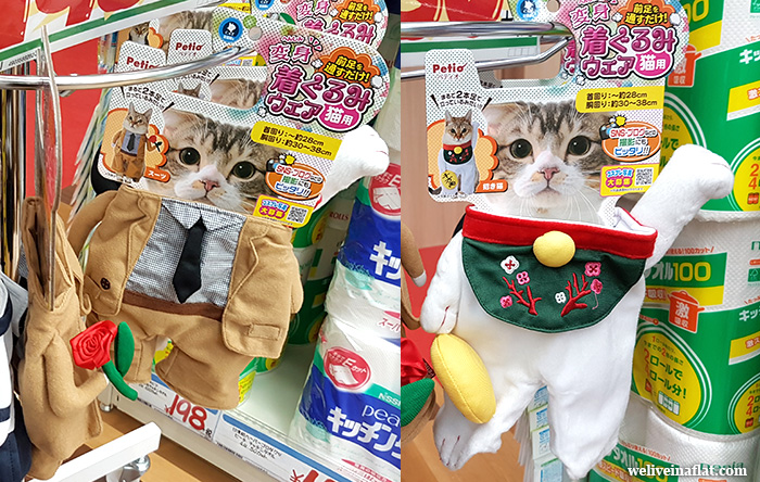 cat costumes in Don Quijote, Osaka & Kyoto