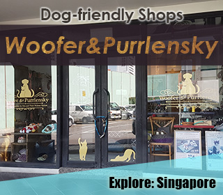Dog Friendly Cafes & Shops in Singapore - We live in a flat