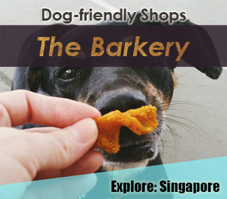 dog friendly pet supplies store and bakery