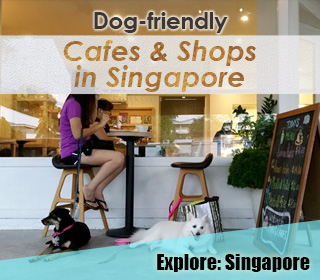 Click for more dog-friendly cafe and shops in Singapore