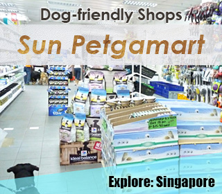 dog friendly pet supplies store sun petgamart