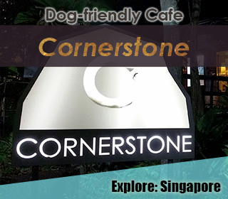 dog friendly singapore cafe cornerstone at bishan park