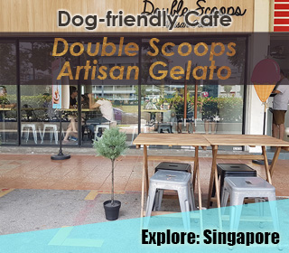 dog friendly singapore cafe double scoops artisan gelato in ang mo kio