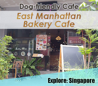 dog friendly singapore cafe east manhattan bakery cafe