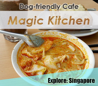 dog friendly singapore cafe magic kitchen in ang mo kio