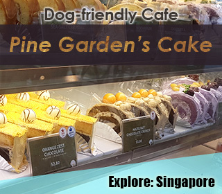 dog friendly singapore cake shop pine garden at ang mo kio