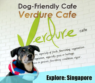 verdure cafe, springleaf nature park