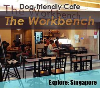 dog friendly singapore cafe the workbench at ang mo kio