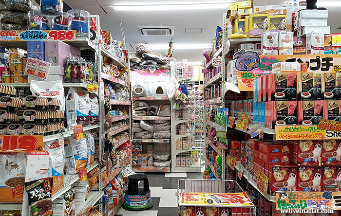 pet shopping in Don Quijote, Osaka