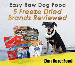 Easy raw dog food review primal northwest stewart more freeze sponsored to advertise contact me solutioingenieria Choice Image
