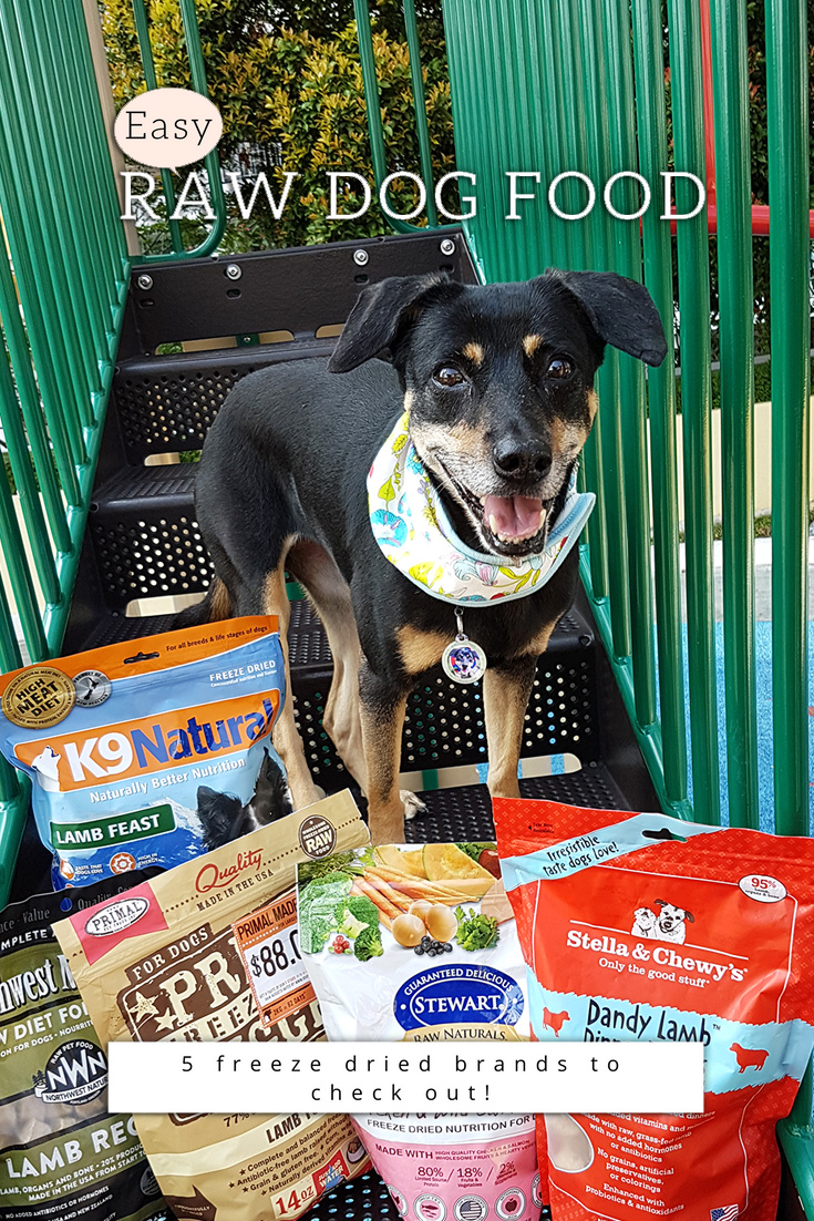 raw dog food - freeze dried brands to check out in singapore online pet supplies stores