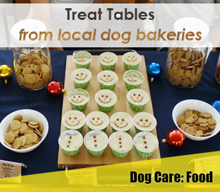 dog treat tables party singapore