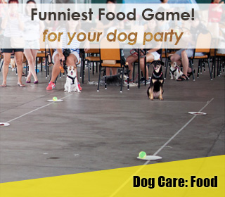 dog party game food game