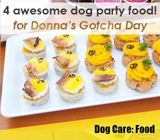 dog party food singapore