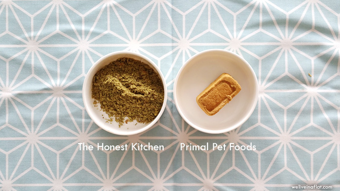 commercial raw food for dogs primal pet foods honest kitchen