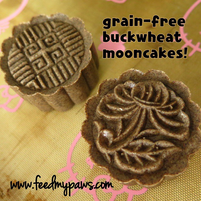 feed my paws buckweed mooncakes