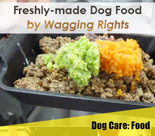wagging rights fresh made food singapore raw