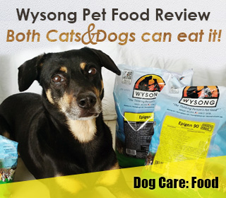 wysong pet food cat dog singapore review