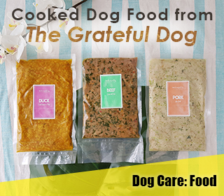 the grateful dog fresh cooked food singapore