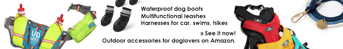 outdoor accessories for dog owners