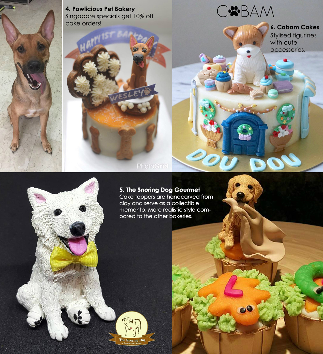 21 Shops To Buy A Cake Or Treats For Your Dog In Singapore We Live