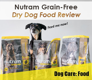 No Time For Homemade Dog Food The Grateful Dog Cooked Food Review